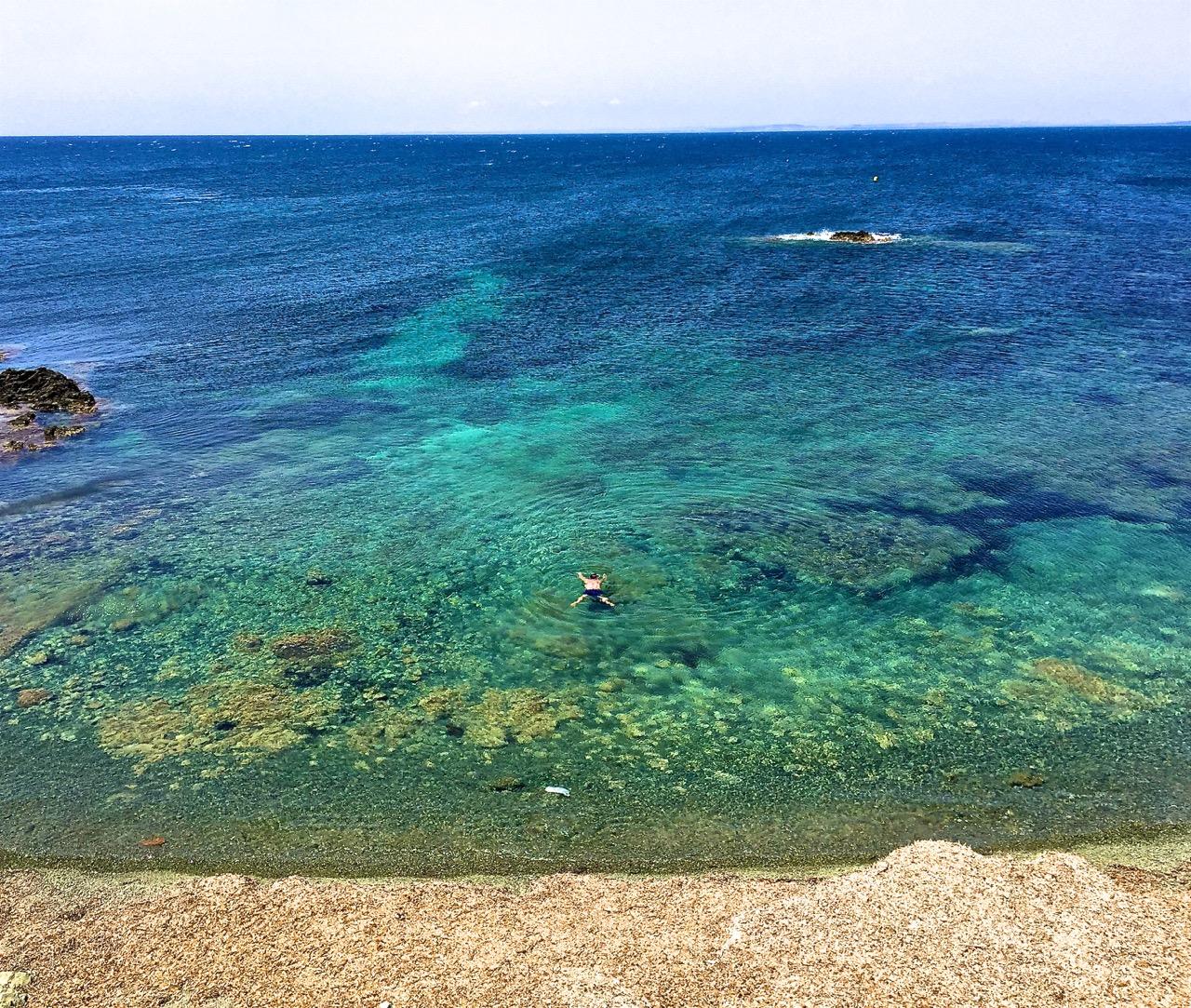 Aquí vemos un Aliforniano disfrutando de las aguas turquesas de Tabarca