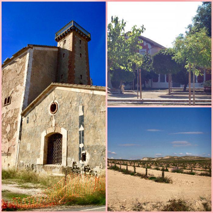 Visita a las Bodegas de Francisco Gómez