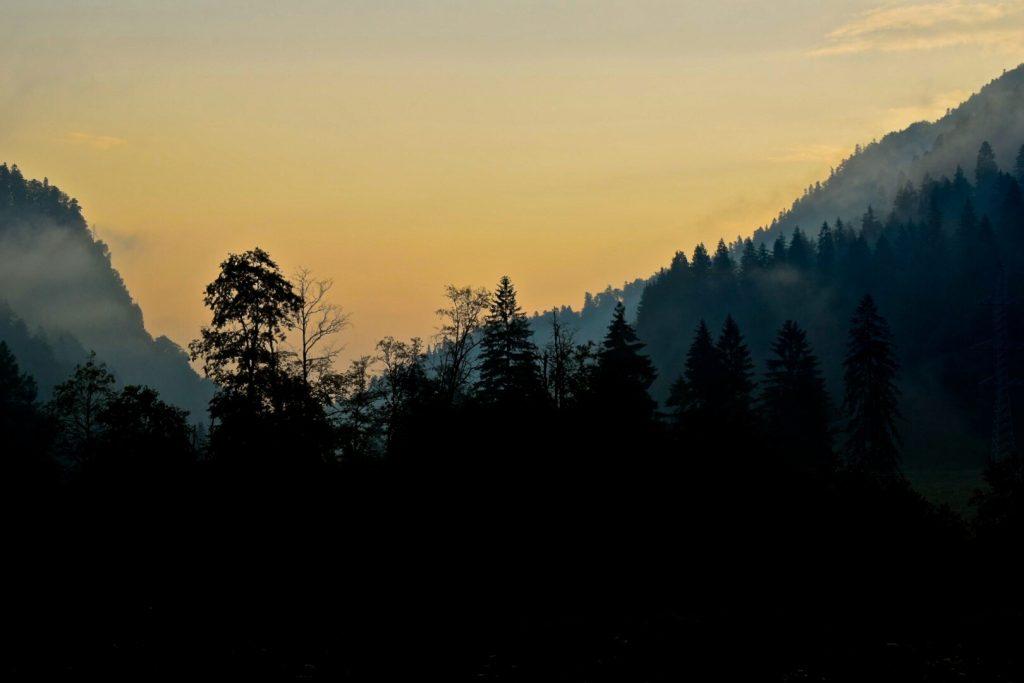 12 + 1 imágenes de la naturaleza para reducir la ansiedad