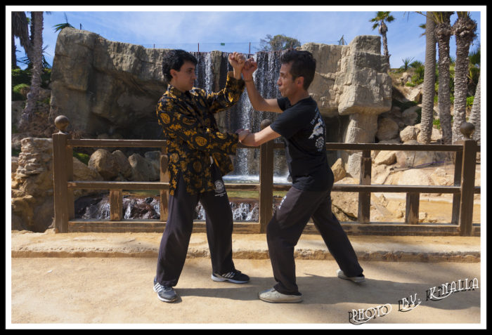 Jeet Kune Do Alicante